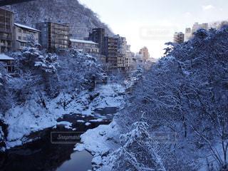 雪の写真・画像素材[346396]