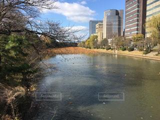 川の写真・画像素材[434938]