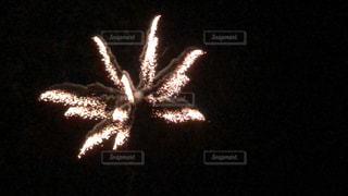 空に花火の写真・画像素材[1387217]
