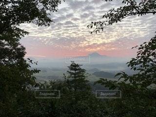 雲海と大山と朝焼けといわし雲の写真・画像素材[1509542]