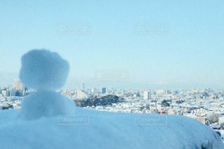 雪に覆われた飛行機の写真・画像素材[972562]