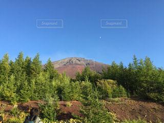 富士山の写真・画像素材[347179]