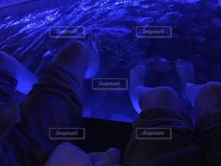 夜の写真・画像素材[349782]