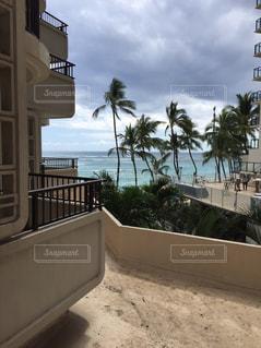 背景の建物とヤシの木とビーチの写真・画像素材[1486874]