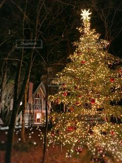 クリスマス ツリーの写真・画像素材[1692438]