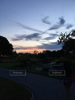 夜景の写真・画像素材[347467]
