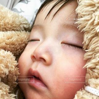 寝顔の写真・画像素材[350769]