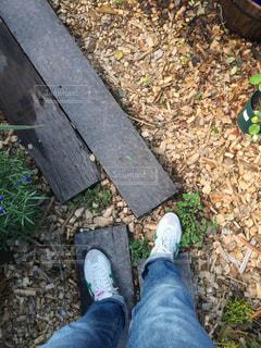 靴 - No.351830