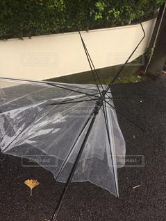 台風での惨事の写真・画像素材[1335180]