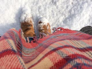 雪の日の散歩 - No.1019069