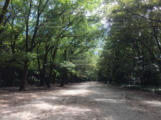 公園 - No.352940