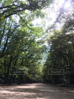 公園 - No.360830
