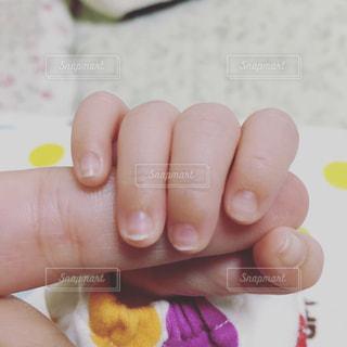 親子の写真・画像素材[348229]
