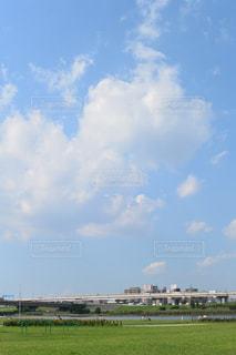 青空と大規模なグリーン フィールドの写真・画像素材[728355]