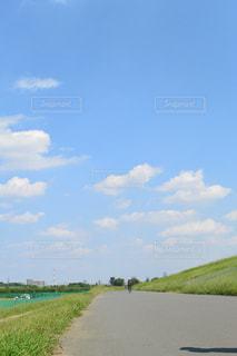 夏の青空とサイクリングロードの写真・画像素材[728425]