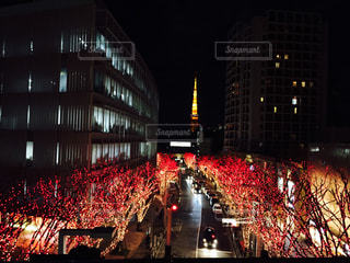 東京タワーの写真・画像素材[348794]