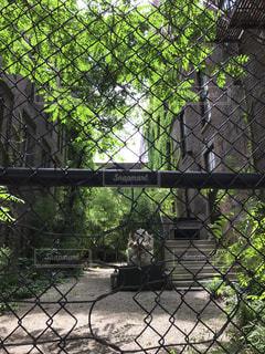 ニューヨークの写真・画像素材[591929]