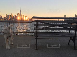 ニューヨークの写真・画像素材[348995]