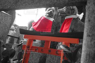 伏見稲荷神社⛩の写真・画像素材[1033656]