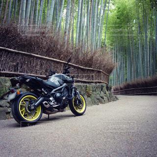 竹林の道 とバイクの写真・画像素材[1375718]