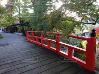 橋の写真・画像素材[349109]