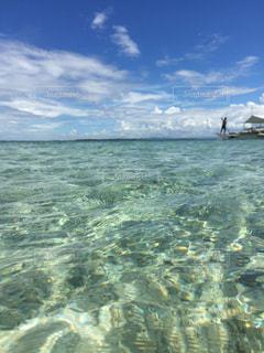 セブ島 海 船 バンカーボートの写真・画像素材[349282]