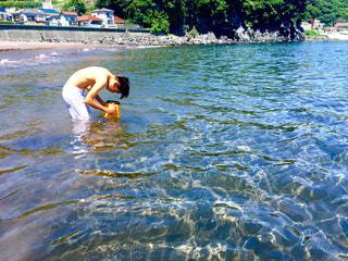 海の写真・画像素材[349388]