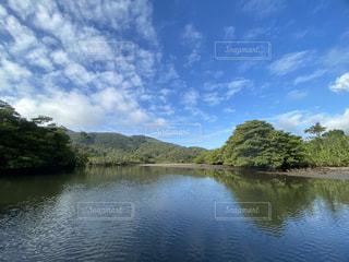 木に囲まれた水域の写真・画像素材[2830159]