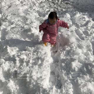 冬の写真・画像素材[349523]
