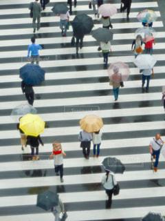 雨 - No.568464