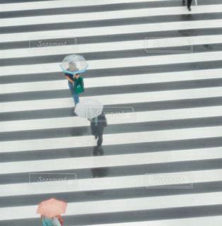 雨 - No.568470