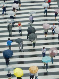 雨 - No.568475
