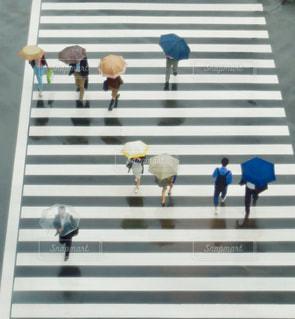 雨 - No.568481
