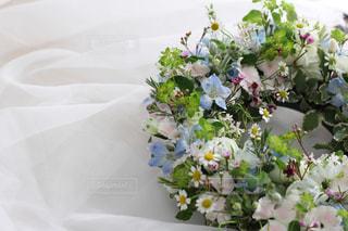 花の写真・画像素材[358899]
