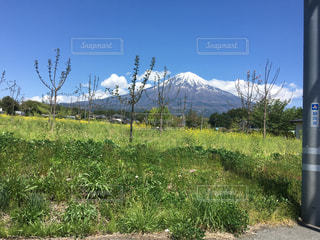 富士山の写真・画像素材[522529]