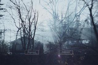 自然 - No.9723