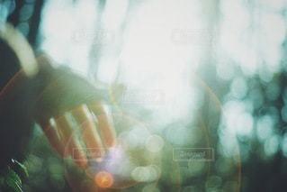 女性の写真・画像素材[9656]