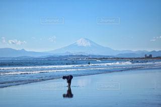 海の写真・画像素材[352280]