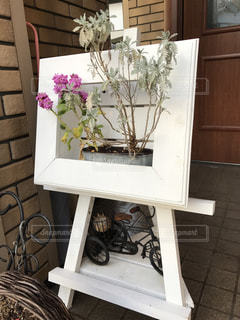 花の写真・画像素材[354783]
