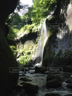 自然の写真・画像素材[352769]