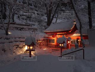 冬の写真・画像素材[353189]