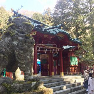 箱根の写真・画像素材[353632]