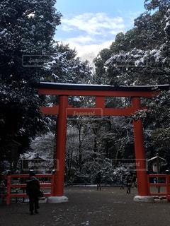 ♯下鴨神社  ♯雪景色  ♯鳥居 ♯京都の写真・画像素材[353776]