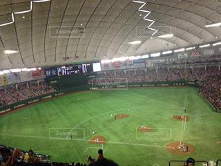 スポーツ,野球,球技