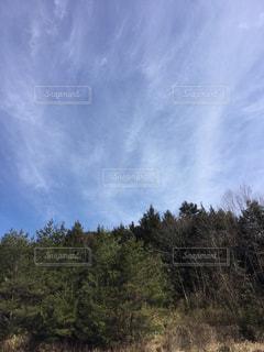 空の写真・画像素材[368490]