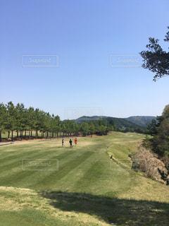ゴルフの写真・画像素材[552737]