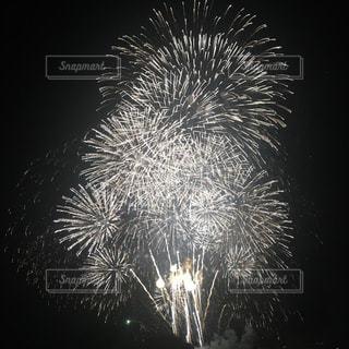 空に花火の写真・画像素材[1620541]