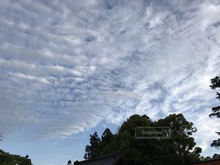 空の写真・画像素材[473563]