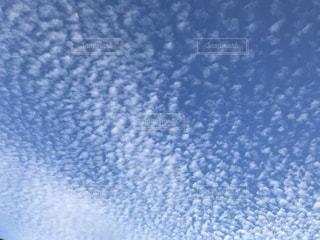 雲の写真・画像素材[841326]