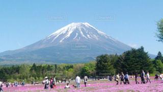 富士山の写真・画像素材[1425884]